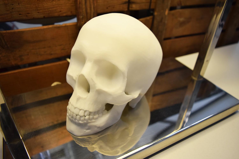 Printed Parts: Skull