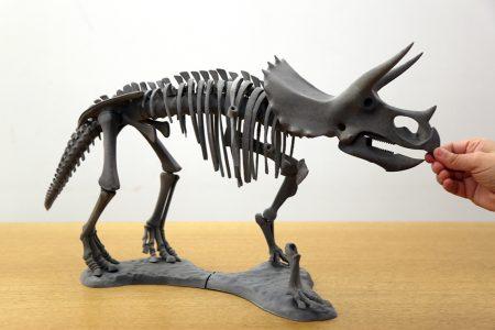 Lateral Dinosaurio